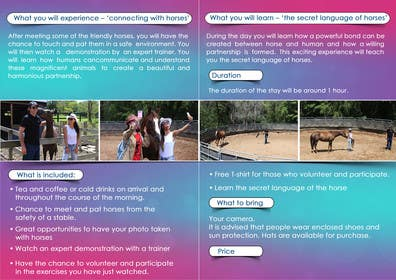 #25 cho Design a Brochure for Tourism bởi msdvenkat