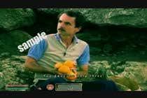 Oblivion NPC ---- Video game ----- edit video -------- (contest #2) için Video Services1 No.lu Yarışma Girdisi