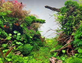 #162 untuk Aquarium: Background picture! oleh darkparadis13