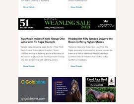 #37 untuk Newsletter redesign oleh Turismoo
