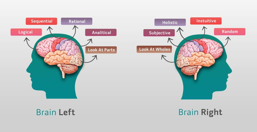 Proposition n°                                        7                                      du concours                                         Need 2 graphics for blog about Left Brain and Right Brain selling