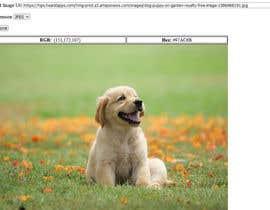 #10 dla Pixel color detection przez rahulbisht28