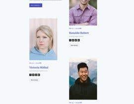 #15 cho Build me a website - ourduetsshow.com.au bởi rayhanpirsl
