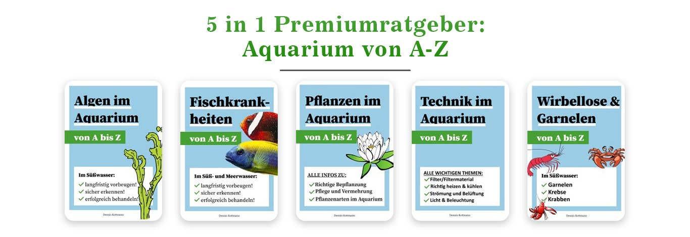 Inscrição nº                                         40                                      do Concurso para                                         Image Banner - Collage of different ebooks