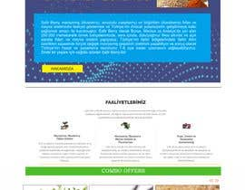 #56 cho web site front page only(only to test the skill) bởi affanfa
