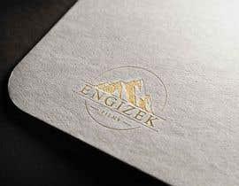 #395 untuk I need a Logo / Engizek Films oleh tousikhasan
