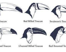#68 untuk Sketches of Toucans oleh kusumkapat