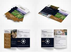 Nro 43 kilpailuun Brochure Designer  - 20/09/2021 07:09 EDT käyttäjältä asma4ft