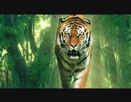 Nro 10 kilpailuun Tiger compositing into jungle käyttäjältä tk77axa