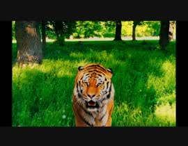 Nro 11 kilpailuun Tiger compositing into jungle käyttäjältä Mustafa4FX