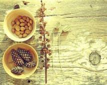 Konkurrenceindlæg #                                        5                                      for                                         Design a Website Mockup for A Health Food Shop