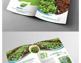 Nro 27 kilpailuun Design a Sales Brochure käyttäjältä shiwaraj