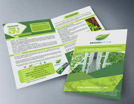 Nro 20 kilpailuun Design a Sales Brochure käyttäjältä AhmedAmoun
