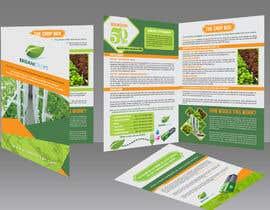 Nro 24 kilpailuun Design a Sales Brochure käyttäjältä AhmedAmoun