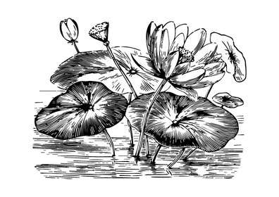 #4 untuk Illustrate 5 Original Spiritual Images (Line Illustration in Mendhi or Persian Vector Style or Similar) oleh khadkamahesh07
