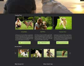 #12 para Urgent design for Dog trainer website por harisramzan11