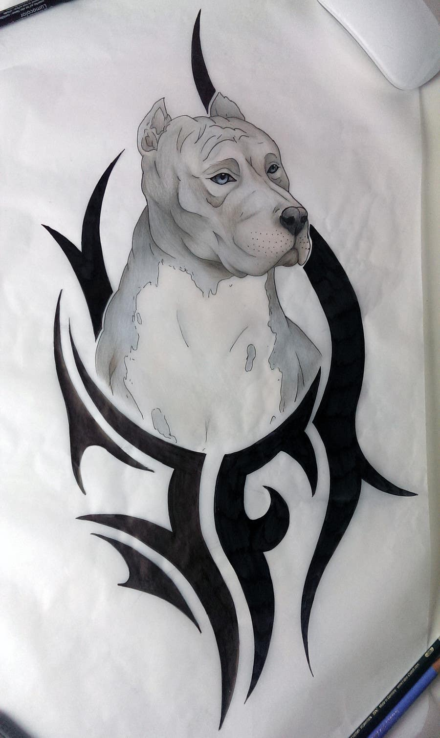 Entry #46 by nora1002 for pitbull tattoo with colors and