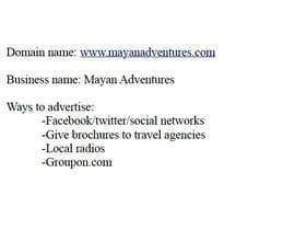 stefaniamarchese tarafından I need perfect domain name and ideas how to advertise our touristic services için no 3