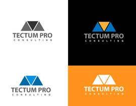 sarifmasum2014 tarafından Create a Logo for a Construction Consulting Company için no 26