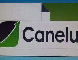 #7 untuk Diseñar algunas tarjetas de presentación for Canelux oleh RmonegroL