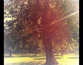 #19 untuk Big Tree Poster oleh Dimiross