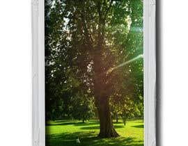#83 untuk Big Tree Photo edit oleh sudipta007