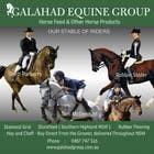 Graphic Design Inscrição do Concurso Nº5 para Graphic Design for Galahad Equine Group Pty Ltd