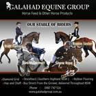 Graphic Design Inscrição do Concurso Nº12 para Graphic Design for Galahad Equine Group Pty Ltd