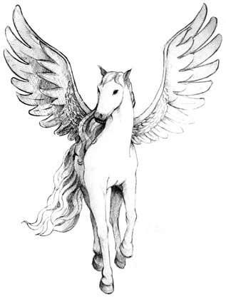 Kilpailutyö #2 kilpailussa Draw a Pegasus