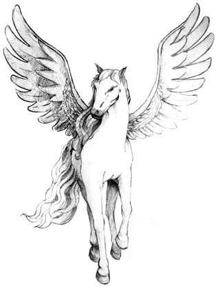 Inscrição nº                                         9                                      do Concurso para                                         Draw a Pegasus