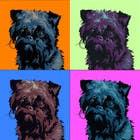 Contest Entry #19 for Affenpinscher dog converted to Pop Art