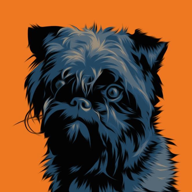 #20 for Affenpinscher dog converted to Pop Art by elenabsl