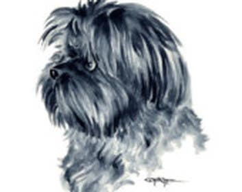#4 for Affenpinscher dog converted to Pop Art by anapasanu