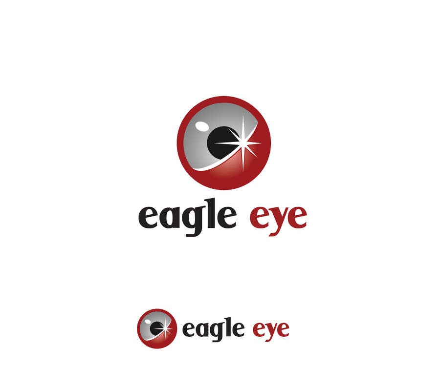 logo design eagle eye camera system freelancer