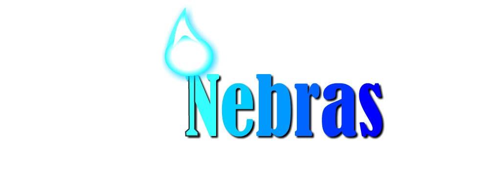 Kilpailutyö #                                        134                                      kilpailussa                                         Design a logo for company called Nebras