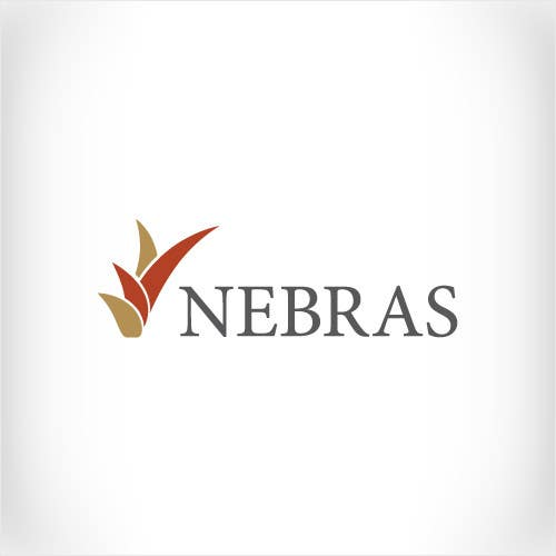 Kilpailutyö #                                        137                                      kilpailussa                                         Design a logo for company called Nebras