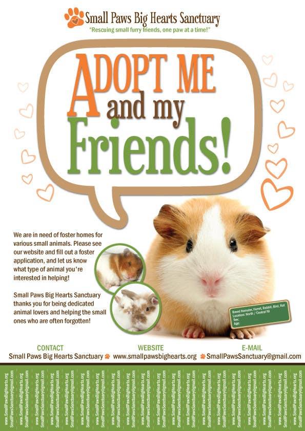Bài tham dự cuộc thi #                                        23                                      cho                                         Design a Flyer for a small animal rescue