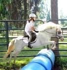 Bài tham dự #61 về Photoshop cho cuộc thi Horse jump photoshop