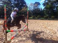 Bài tham dự #64 về Photoshop cho cuộc thi Horse jump photoshop