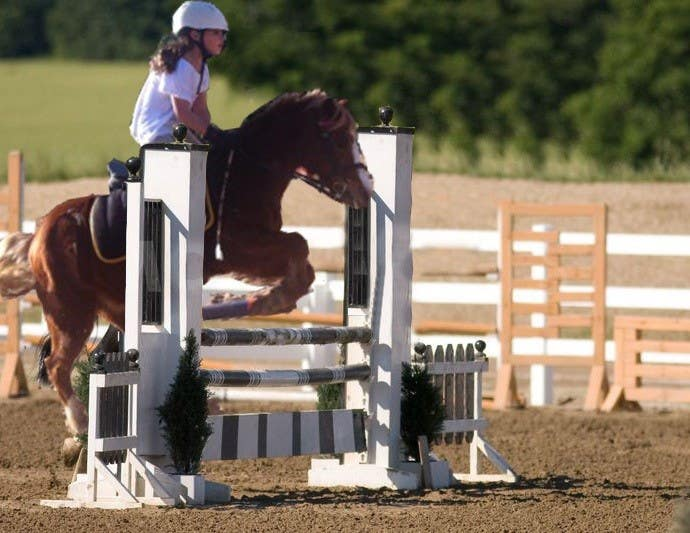 Bài tham dự cuộc thi #                                        2                                      cho                                         Horse jump photoshop