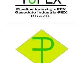 #25 untuk Desenvolver uma Identidade Corporativa, Name and Logo for a Industry of Pipe and fittings in Brazil. oleh netbih