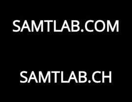 ValeriyaS tarafından Find a domain name for a new company için no 12