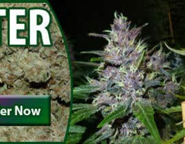 #14 para Design a banner for a marijuana fertilizer por antbrown88