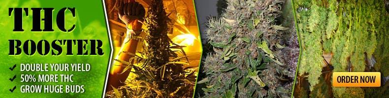 Contest Entry #3 for Design a banner for a marijuana fertilizer
