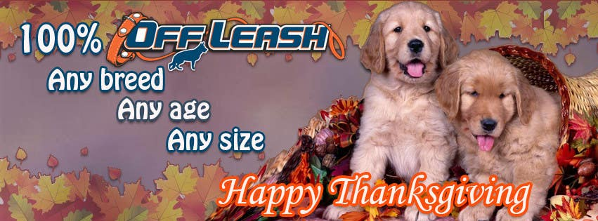 #11 for Thanksgiving Facebook Banner and Profile Pic by AlinutaM