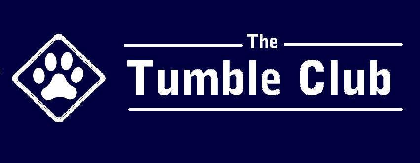 Penyertaan Peraduan #20 untuk Design a Logo for TTC