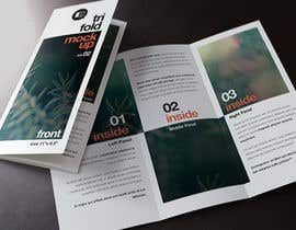 #25 untuk Design a Brochure for 3 related businesses oleh usaart