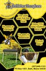 Contest Entry #32 for Advertisement Design for Gold Star Honeybees