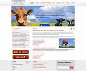 Graphic Design Contest Entry #24 for Website Design for Beefs Organization