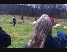 mazyoez tarafından Creative and Witty Video Editor: Sheep Herding as Teamwork için no 3